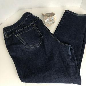Women's Sz 20S Torrid Jeans